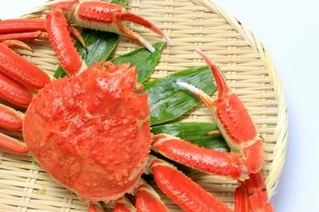 日本有数の蟹の産地とは?